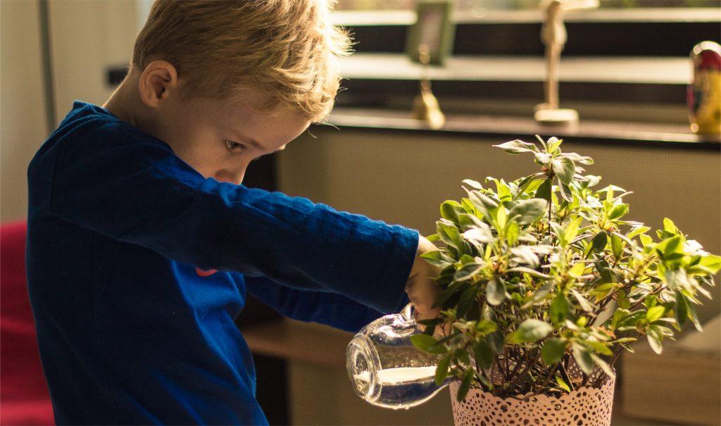copil in mediul montessori